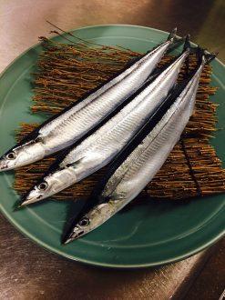 おいしい秋刀魚の時期がやってきました!